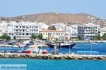 Tinos | Griekenland | De Griekse Gids - foto 21 - Foto van De Griekse Gids